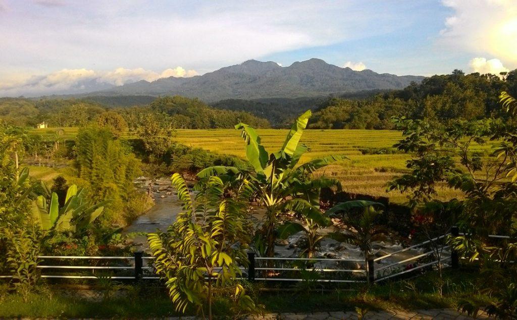 Lahan memiliki view indah menghadap gunung, sawah dan sungai